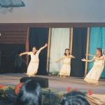 Indiafest20100007